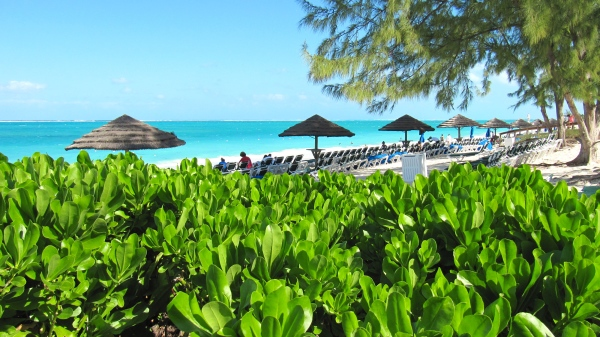Beaches Resort, Turks & Caicos