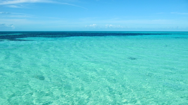The water around French Cay.