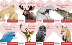 "Travel Manitoba ""Canada's Heart... Beats"" Valentine's Day cards."