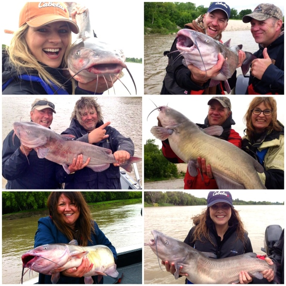 Just a few of the Fish Tales catches.
